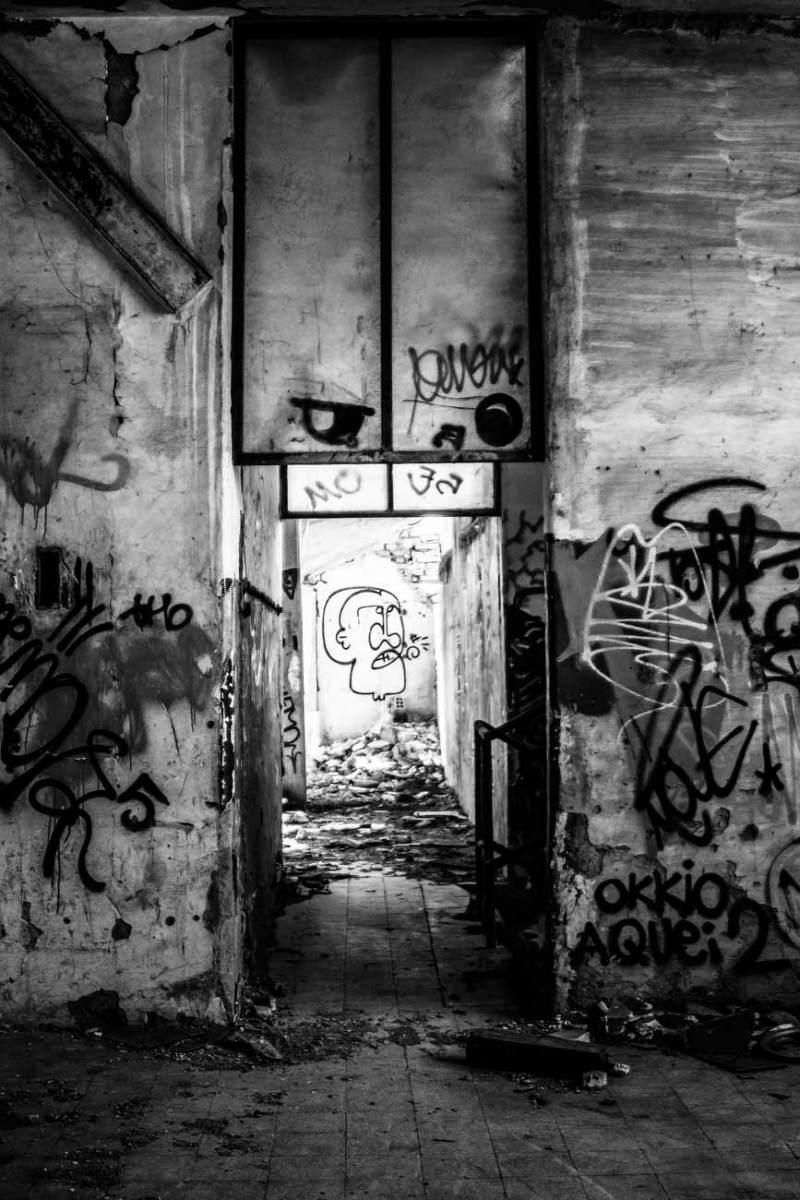 DiLorenzo_looking_through_4