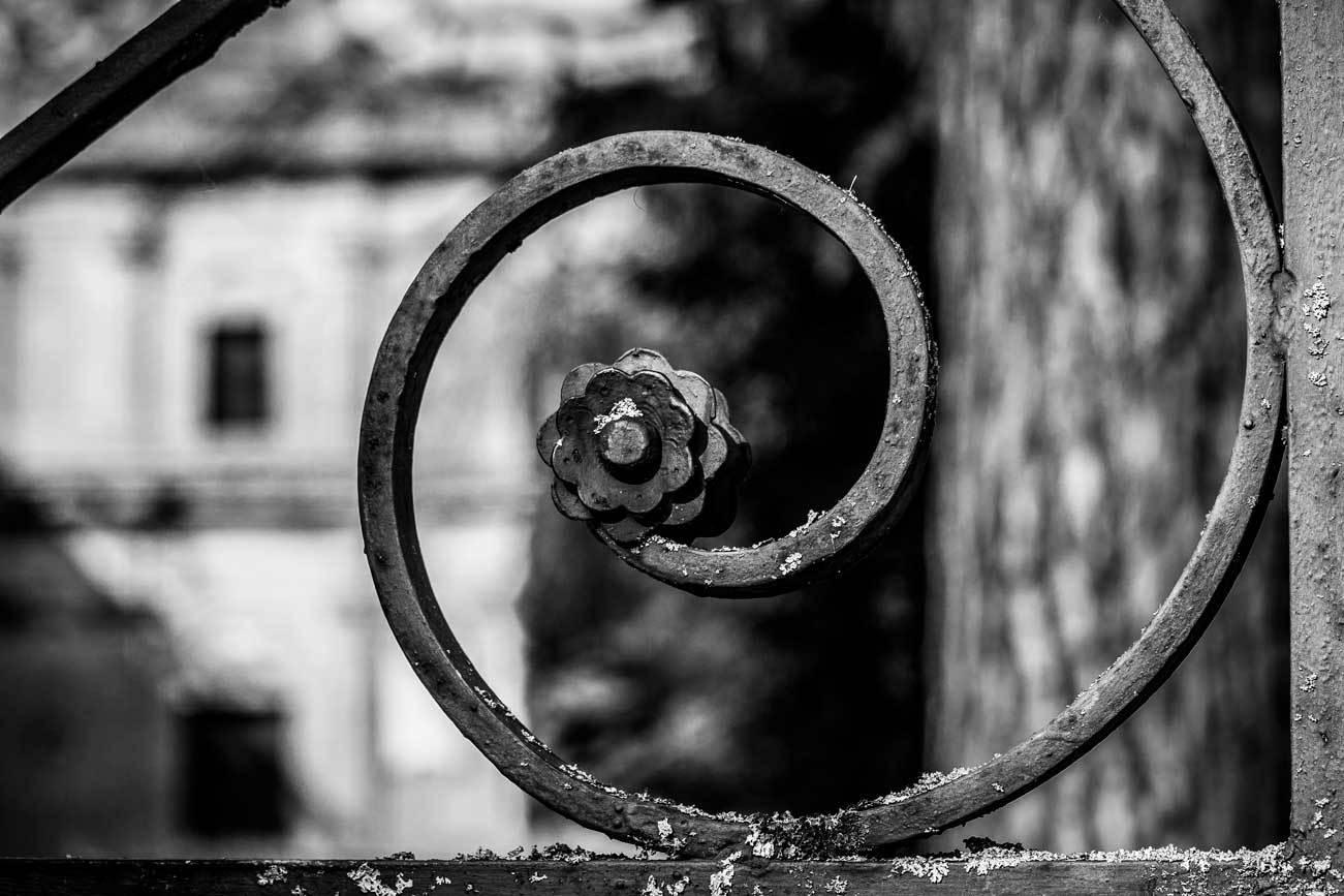 DiLorenzo_looking_through_6